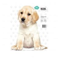 KEK Amsterdam Wandsticker Labrador Welpe 28 cm