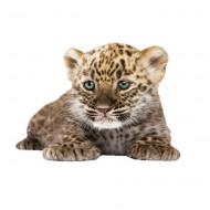 KEK Amsterdam Wandsticker Safari Friends Leopard 23cm
