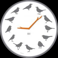 Kookoo Wanduhr Ultraflat Vögel grau